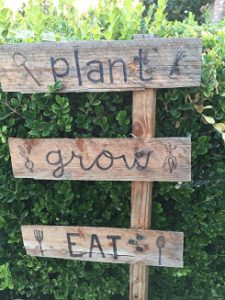 plant-grow-eat-sign